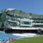 campo-cricket01